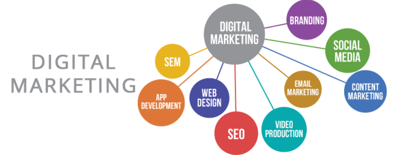 Digital Marketing Services in USA Websquare Infotech +1800-979-1307